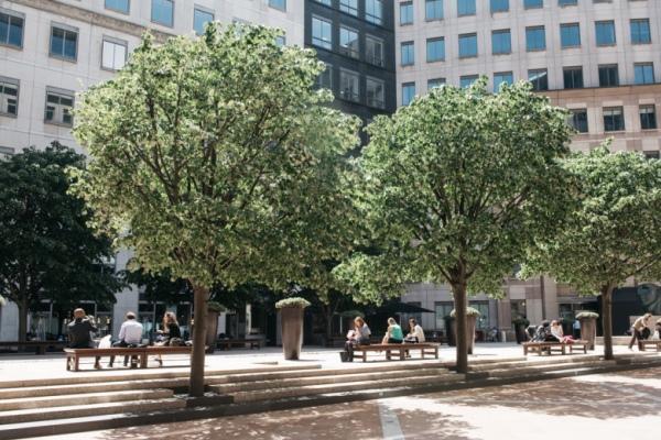 Columbus Courtyard