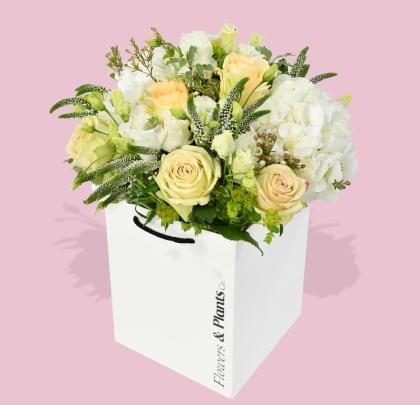 Flowers & Plants Co